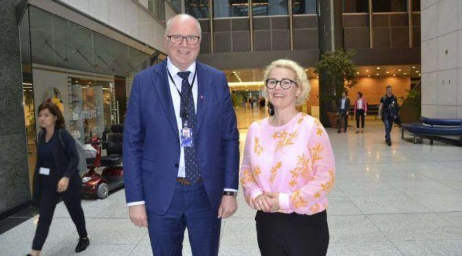Suomen komissaari-ehdokkuus