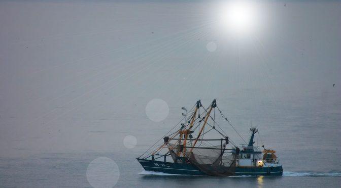 Kuninkaan lupaus (1666) kalastusoikeudesta voimassa